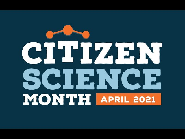 NSN Webinar Series: Citizen Science and the Night Sky