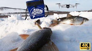 Весенняя рыбалка Ловля ОКУНЯ ПЛОТВЫ в марте Рыбалка 2021 Шарыпово В поисках РЫБЫ