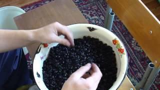 видео Вино из винограда в домашних условиях: простые рецепты приготовления