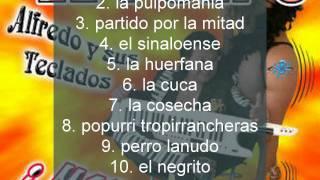 Alfredo el pulpo - disco # 24.