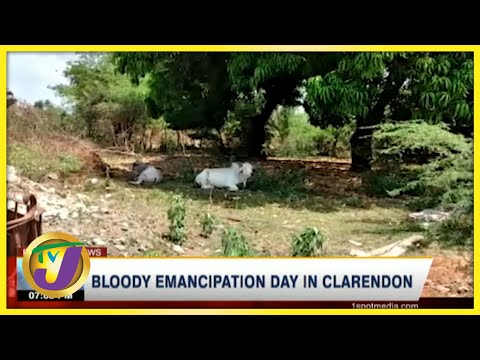 Bloody Emancipation Day in Clarendon   TVJ News - August 2 2021