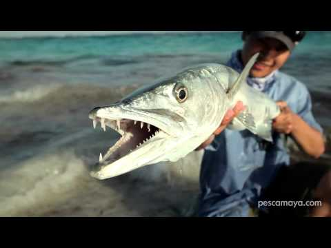 Pesca Maya Lodge