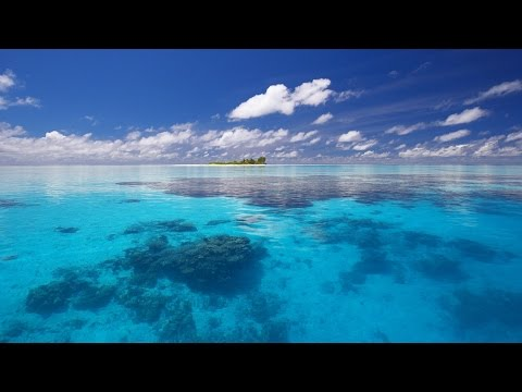 Mahaon - Ocean [Visualization]