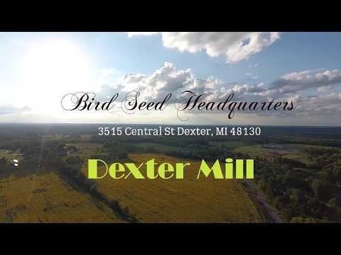 65 Acre Sunflower Field by Dexter Mill - Real Michigan Drone Photography