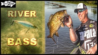 Tips for Finding and Catching River Bass on Jerkbaits