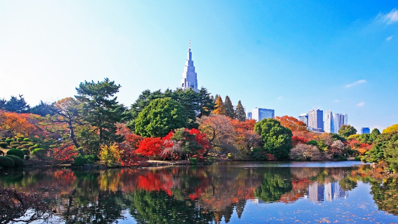 Top Place to Visit in Tokyo Japan - Travel 2017 in Japan
