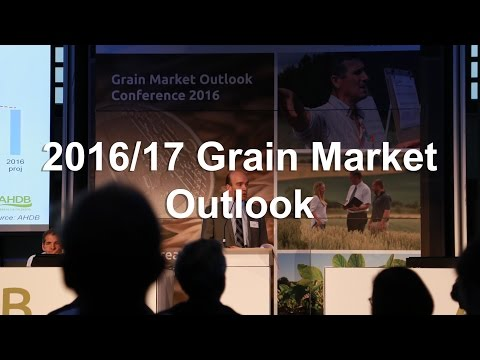 2016/17 Grain Market Outlook