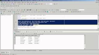 Informatica : Minus Operation On Flat Files.avi