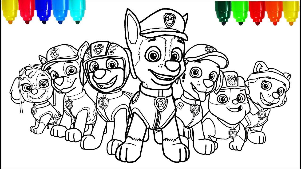 paw patrol color # 5