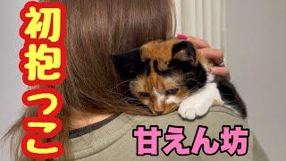 初めて抱っこで寄り添ってくれる猫がかわいすぎた!
