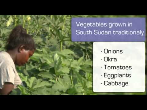 South Sudan Investment Opportunties