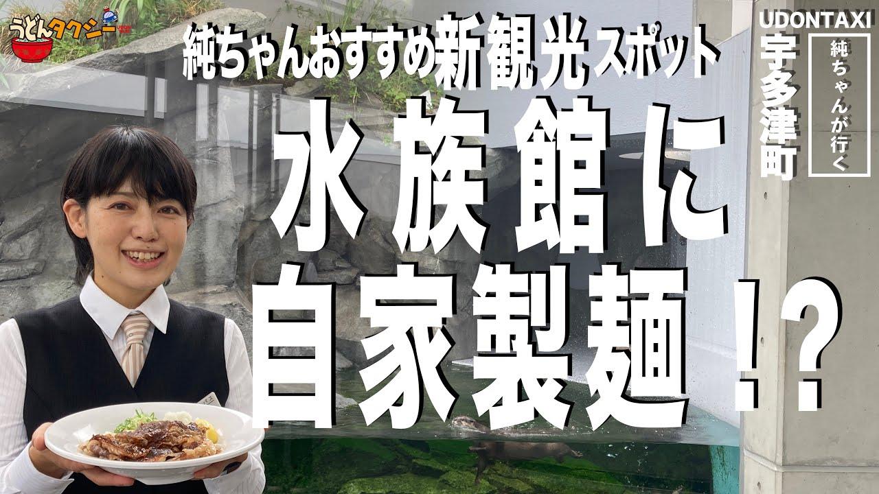 絶景とうどんを味わえるなんて最高!四国最大水族館に自家製麺うどんだなんて!?純ちゃんおすすめ観光スポット!