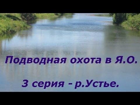 Онлайн знакомства Ярославская область. Знакомства с