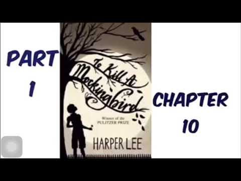 To Kill A Mockingbird By Harper Lee Part 1 Chapter 10 Audiobook Read Aloud