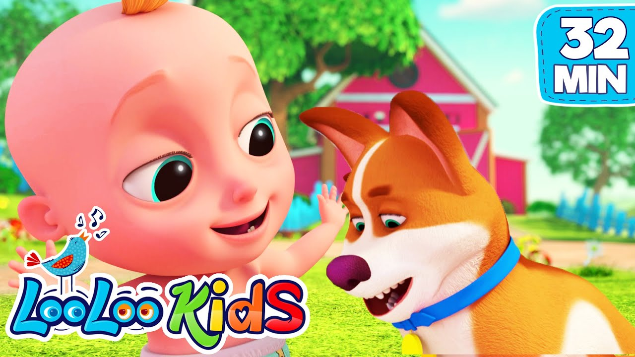 Bingo and Johny- The BEST SONGS for Kids | LooLooKids