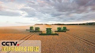《国际财经报道》近期中国企业采购美国农产品取得进展 20190729 | CCTV财经