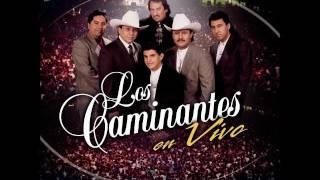 LOS CAMINANTES MIX (LO MEJOR DE LO MEJOR)