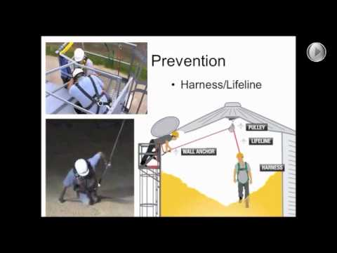 Grain Bin Safety Keep Your Employees Alive