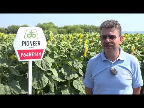 Успешно земеделие -