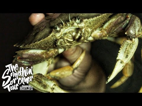 Crabbing In San Francisco 🦀