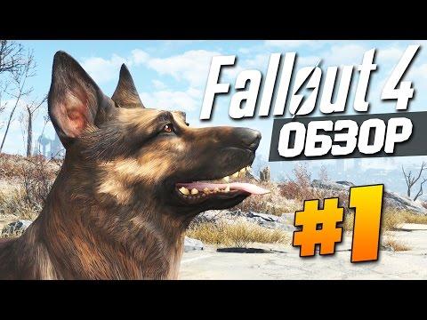 Где скачать и как установить Fallout 3