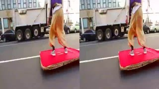 ALADDIN MAGIC CARPET PRANK 3d SBS format
