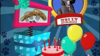 Nelly Boomerang Tvs Furry Pet Week
