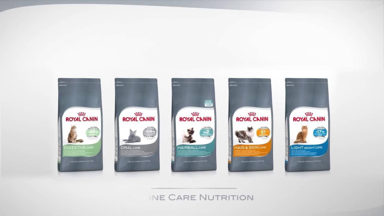 feline care nutrition hair and skin care youtube. Black Bedroom Furniture Sets. Home Design Ideas