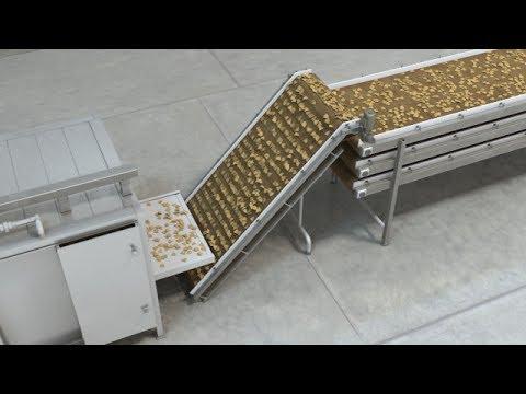 Conveyor Belt Replacement