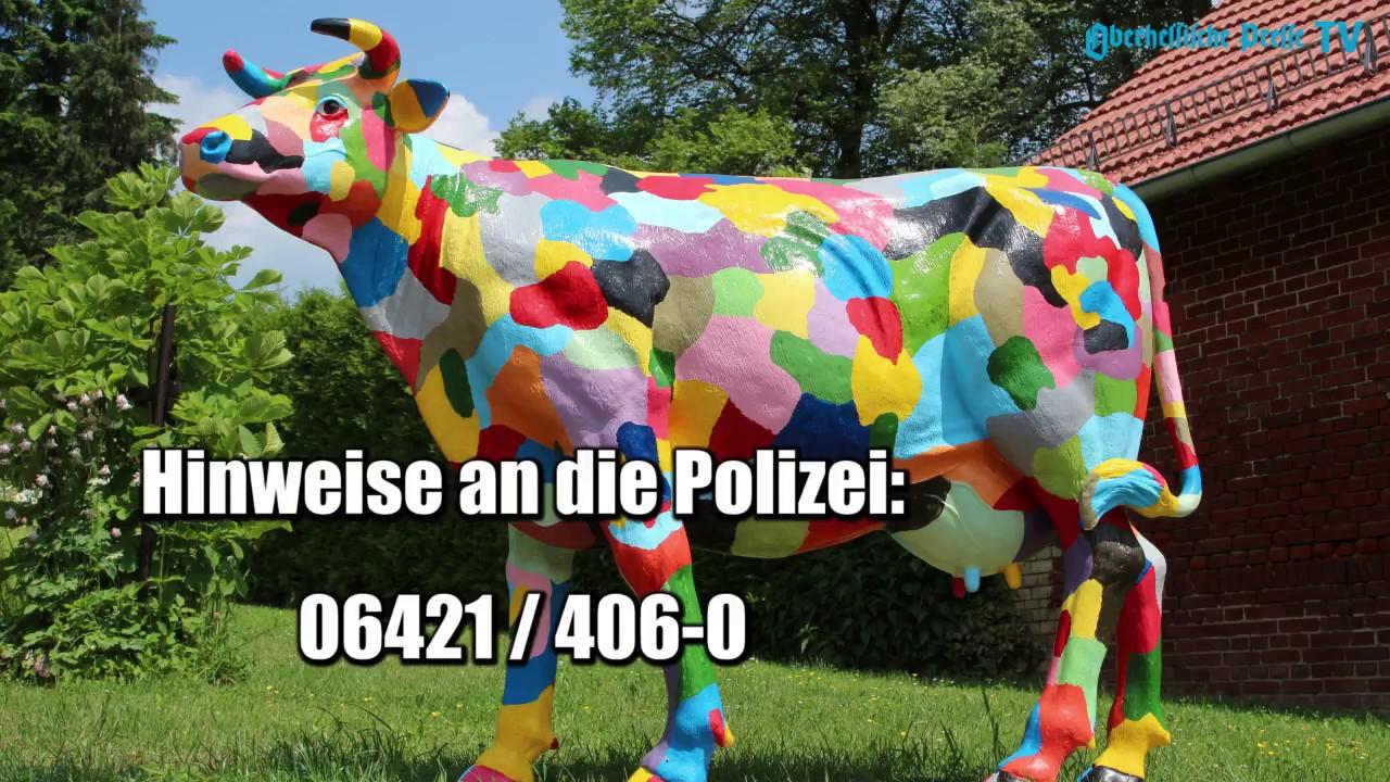 Erfreut Kuh Kopf Anatomie Galerie - Physiologie Von Menschlichen ...