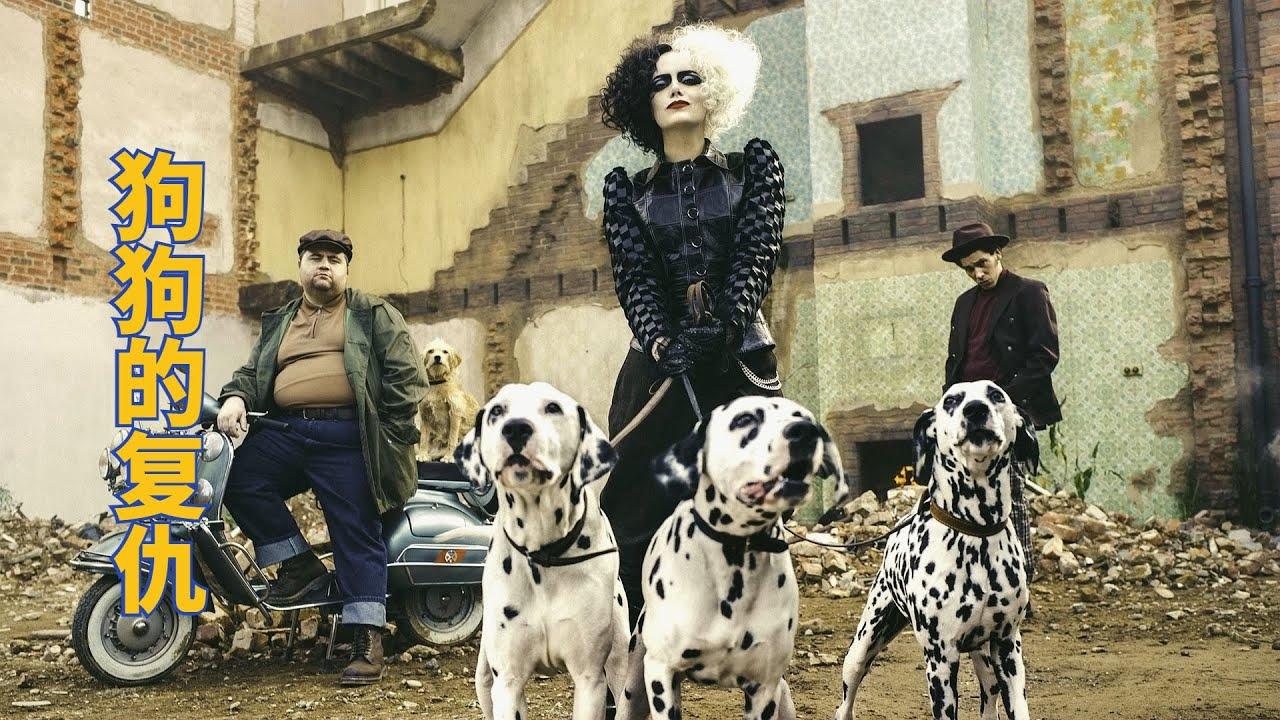 小偷因为偷小狗,招惹了全城狗狗复仇,搞笑动物电影