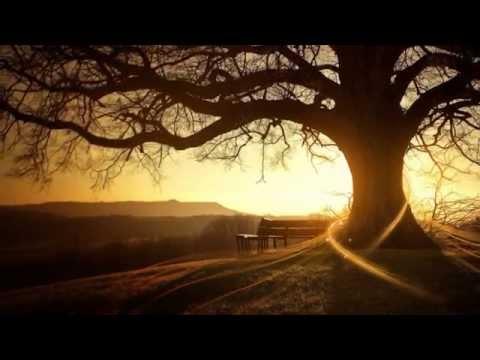 ( Hòa Tấu Piano ) Fabrizio Paterlini - Autumn Stories ( Câu Chuyện Mùa Thu )