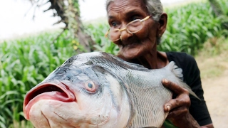 Fish Fry Recipe || Simple and Delicious Fish Fry By My Granny