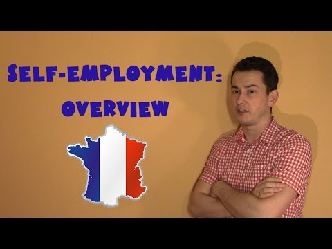 France #11 - Self-employment: Overview