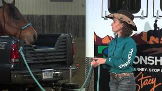 Gambar cover Stacy Westfall: Emotional control of your horse (3 of 10)