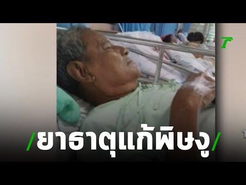 ร้องพ่อถูกงูเห่ากัดให้กินยาธาตุรักษาข่าวเช้าไทยรัฐ เสาร์-อาทิตย์ ปี 62