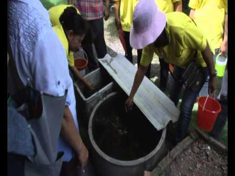 55-06-15 รณรงค์กำจัดลูกน้ำยุงลาย.wmv