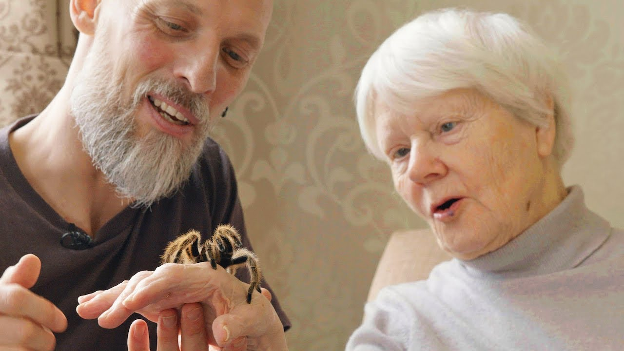The Creepy Crawlies Helping People With Dementia