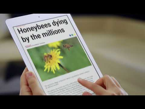 Honey Nut Cheerios – Bring Back The Bees
