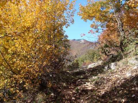 Parco dei Monti Lucretili 'Ara della Macchia m 1177'