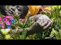 Don G x Duc x PierSlow - Carapinha (Video)