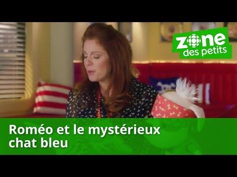 Bookaboo - Roméo et le mystérieux chat bleu avec Isabelle Boulay - Zone Jeunesse
