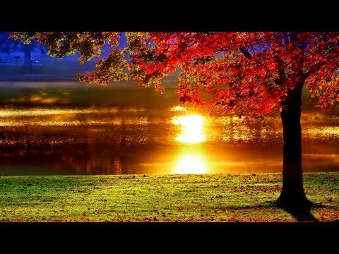 September Prelude To Autumn No 3/James Michael Stevens