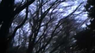 34 Ame no Bojo 34 Yashiro Aki Enka gt