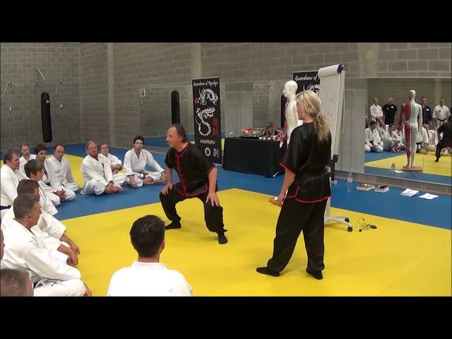 Invited Masters Kyusho Jutsu 1 november GoR 2019 Part 1 Walter Toch