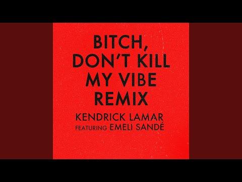 Bitch, Don't Kill My Vibe Remix