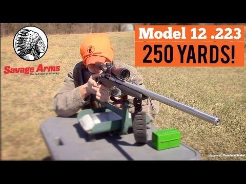 LONG RANGE SHOOTING! || SAVAGE MODEL 12  223!