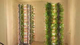 """Эффективная аэропонная установка """"Аэро-Флора"""" для круглогодичного выращивания растений в помещениях"""
