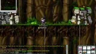 MapleStory Lvl 62 Assassin MrSimpsson  Bera