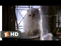 Stuart Little 2 (2002) - In The Can Scene (7/10) | Movieclips